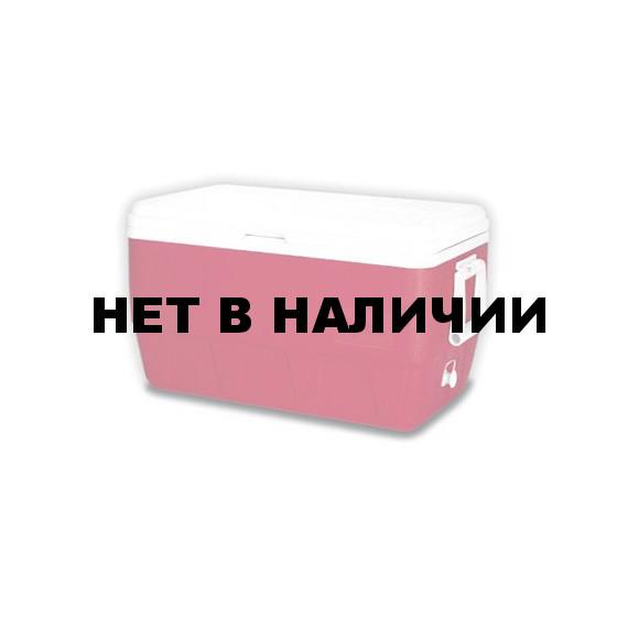 Изотермический контейнер Igloo Family 48