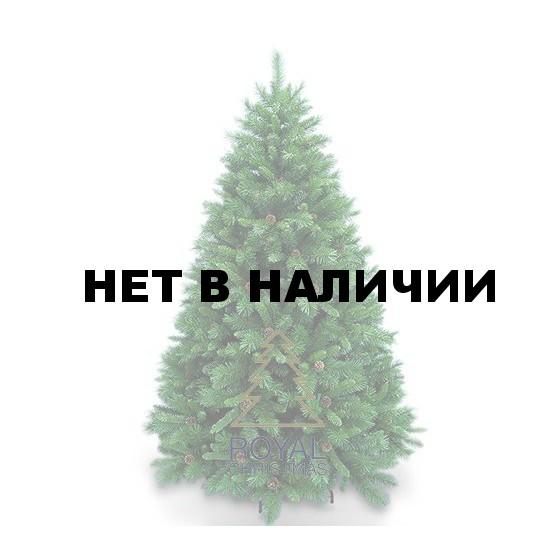 Ель Royal Christmas Detroit 527120 (120 см)