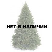 Ель Royal Christmas Washington 230240 (240 см)