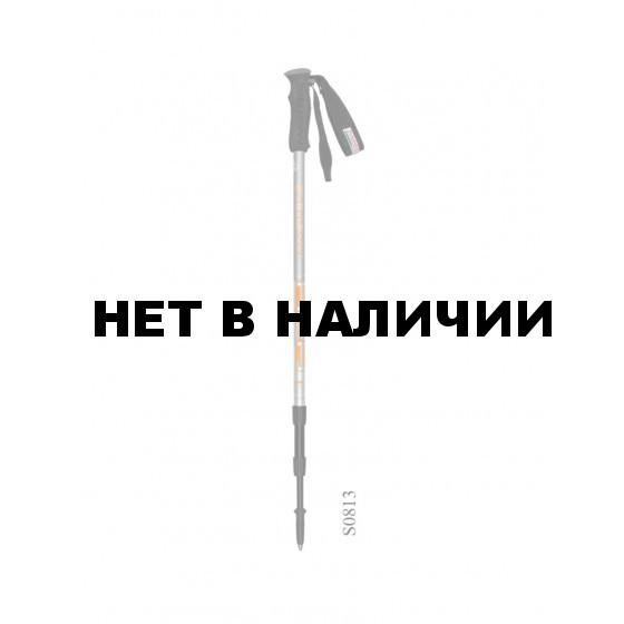 Телескопические палки ASH S0813