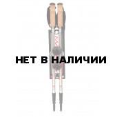 Телескопические палки ASH S2011