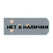 Погоны ПС ФСБ Капитан вышитые золото