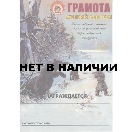 Грамота Меткий выстрел зима