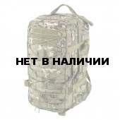 Рюкзак Helikon-Tex RACCOON Backpack camogrom