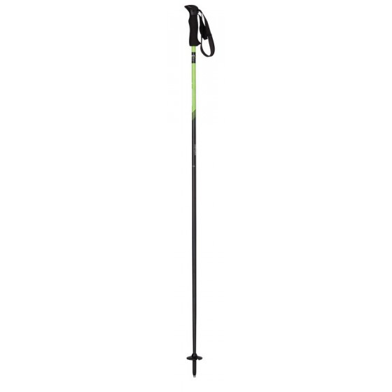 Горнолыжные палки Elan 2015-16 SP AMPHIBIO GREEN