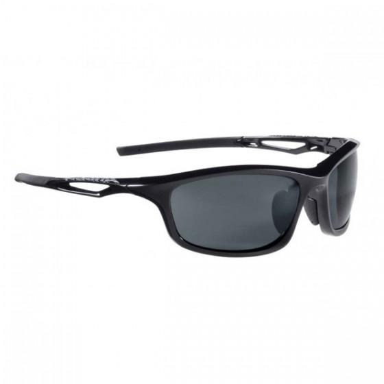 Очки солнцезащитные ALPINA 2016 CASUAL A 72 black matt