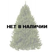 Сосна Триумф Величавая 73563 (185 см)