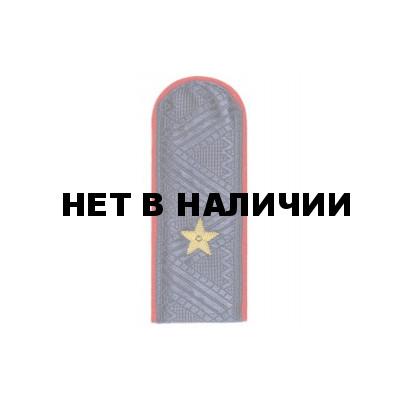 погоны генерала полиции нового образца фото - фото 11