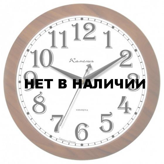 Камелия 0225093