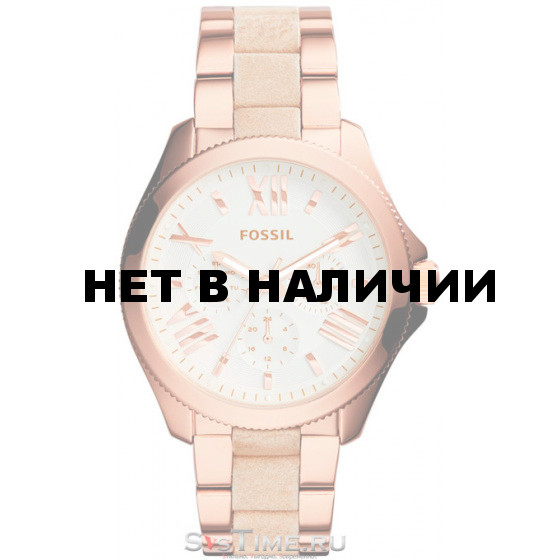 Наручные часы Fossil AM4622