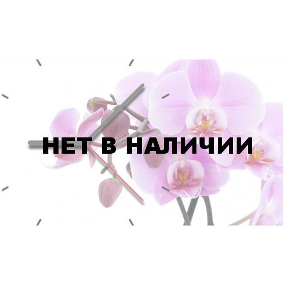 Time2go 1016