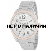 Наручные часы Спутник М-996440/6 (сталь)