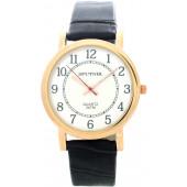 Мужские наручные часы Спутник М-857900/8 (сталь)