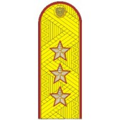 Погоны генерал-полковник ФСИН с хлястиком парадные