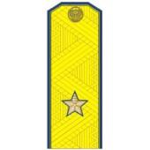 Погоны генерал-майор ФСБ с хлястиком парадные