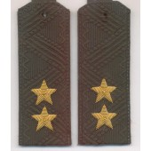 Погоны генерал-лейтенант МО с хлястиком повседневные