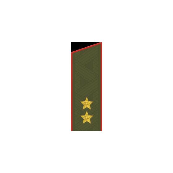 Погоны генерал-лейтенант МО на китель повседневные