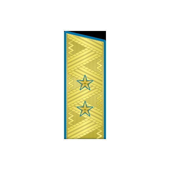 Погоны генерал-лейтенант ВДВ-ВВС на китель парадные