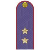 Погоны генерал-лейтенант ФСИН с хлястиком повседневные