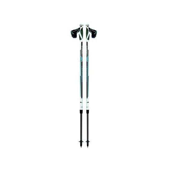 Телескопические палки для скандинавской ходьбы TRAINING 01N0616