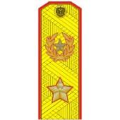 Погоны МО генерал армии нового образца парадные трапеция на китель золото