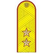 Погоны генерал-лейтенант ФСИН на китель парадные