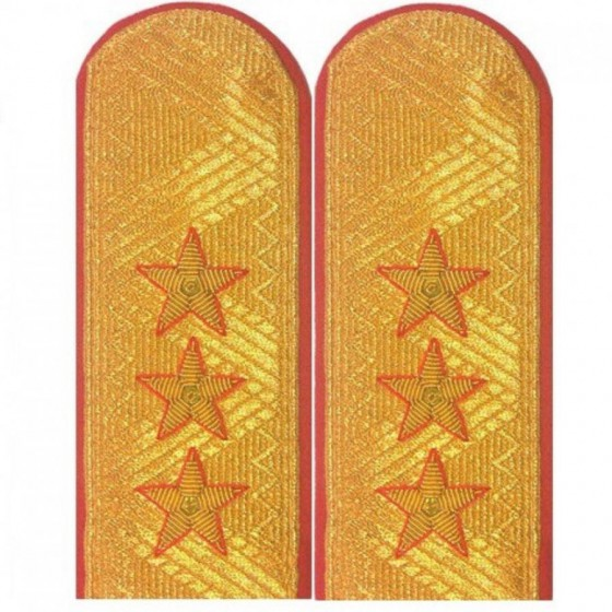 Погоны генерал-полковник Полиции с двумя шлевками парадные