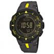 Часы Casio PRG-300-1A9 (PRO TREK)