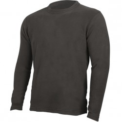 Термобелье Arctic футболка L/S Polartec micro 100 French Roast