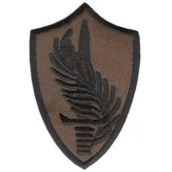 Термонаклейка -1174 Центральное Командование США вышивка