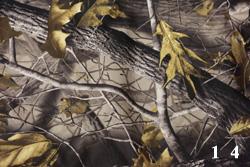 Осенний дуб-3