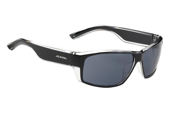 Очки солнцезащитные ALPINA 2015-16 CASUAL A 61 black transparent
