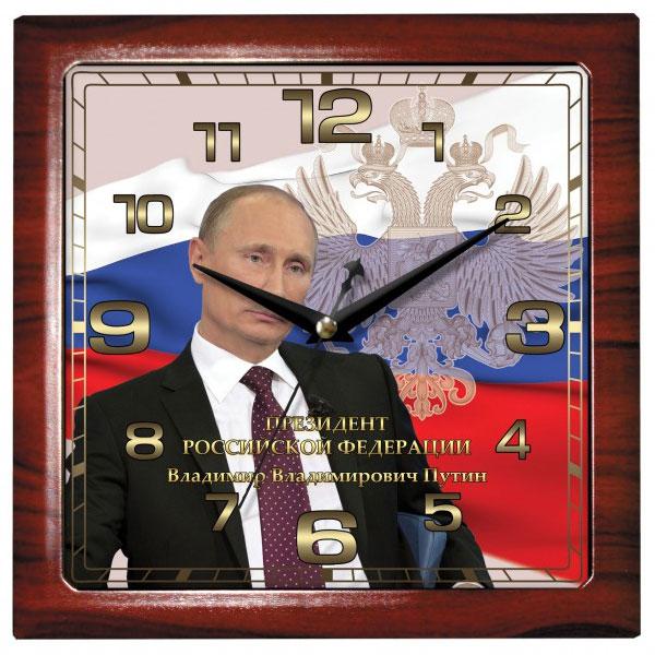 Камелия 0008053 Путин квадрат