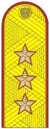 Погоны генерал-лейтенант ФСИН с хлястиком парадные метанит