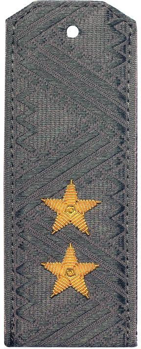 Погоны генерал-полковник ФСИН на серую рубашку повседневные