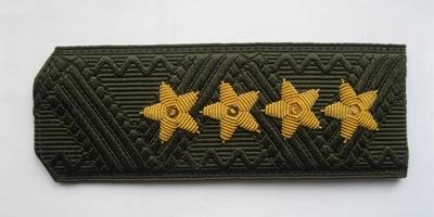 Погоны МО генерал армии старого образца повседневные на зеленую рубашку