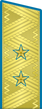 Погоны генерал-лейтенант ВДВ-ВВС на китель парадные метанит