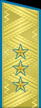 Погоны генерал-полковник ВДВ-ВВС на китель парадные метанит