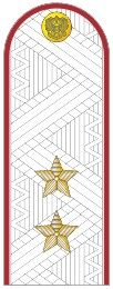 Погоны генерал-лейтенант ФСИН на белую рубашку повседневные