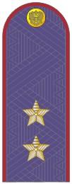 Погоны генерал-лейтенант ФСИН на китель повседневные