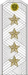 Погоны генерал армии старого образца голубой кант парадные на белую рубашку