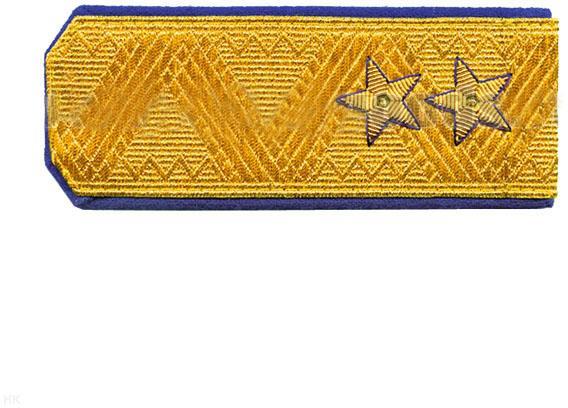 Погоны генерал-лейтенант ФСБ с хлястиком парадные метанит