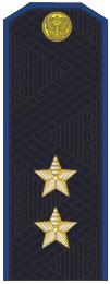 Погоны генерал-лейтенант ФСБ на китель повседневные