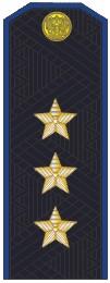 Погоны генерал-полковник ФСБ с хлястиком повседневные