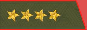 Погоны МО генерал армии старого образца повседневные со скосом на китель