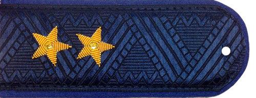 Погоны генерал-лейтенант Юстиции на китель повседневные
