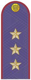 Погоны генерал-полковник ФСИН с хлястиком повседневные