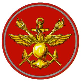 Военная инспекция Министерства обороны